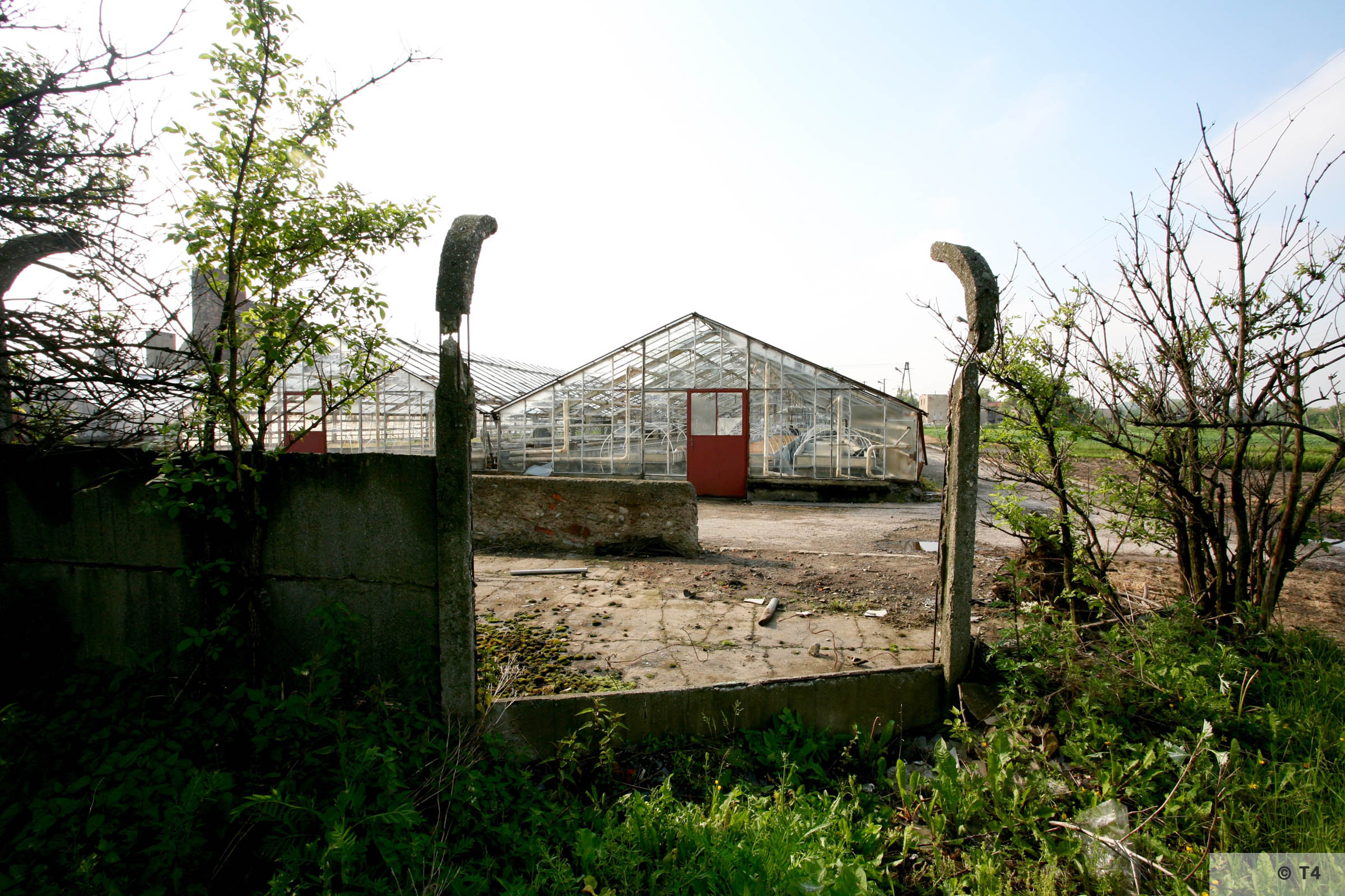 New greenhouses. Remnants of fence posts. 2006 T4 5150