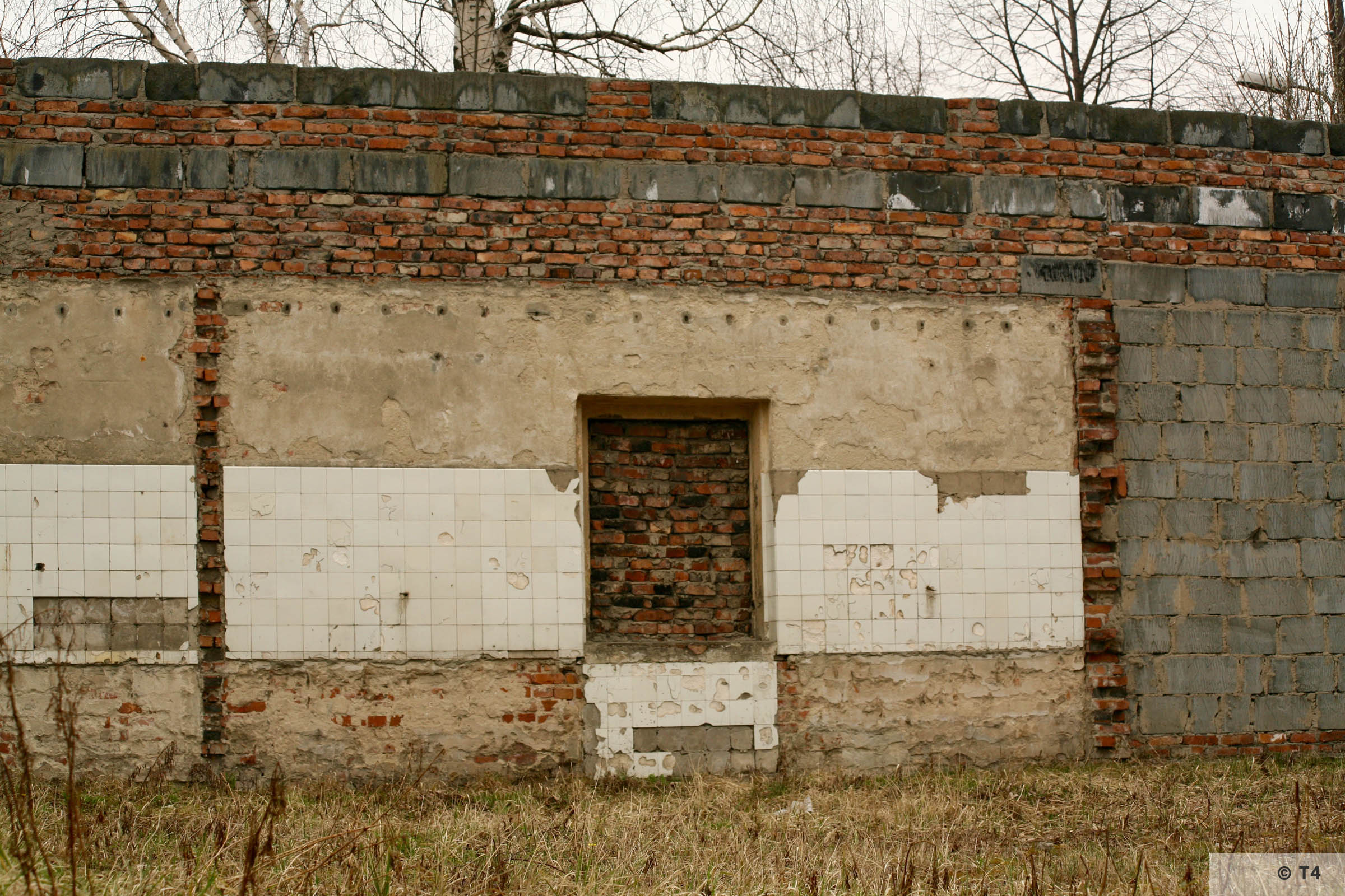 Original wall of Günther III. 2006 T4 3243