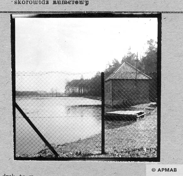 Pond where prisoners worked. 1959 APMAB 4402