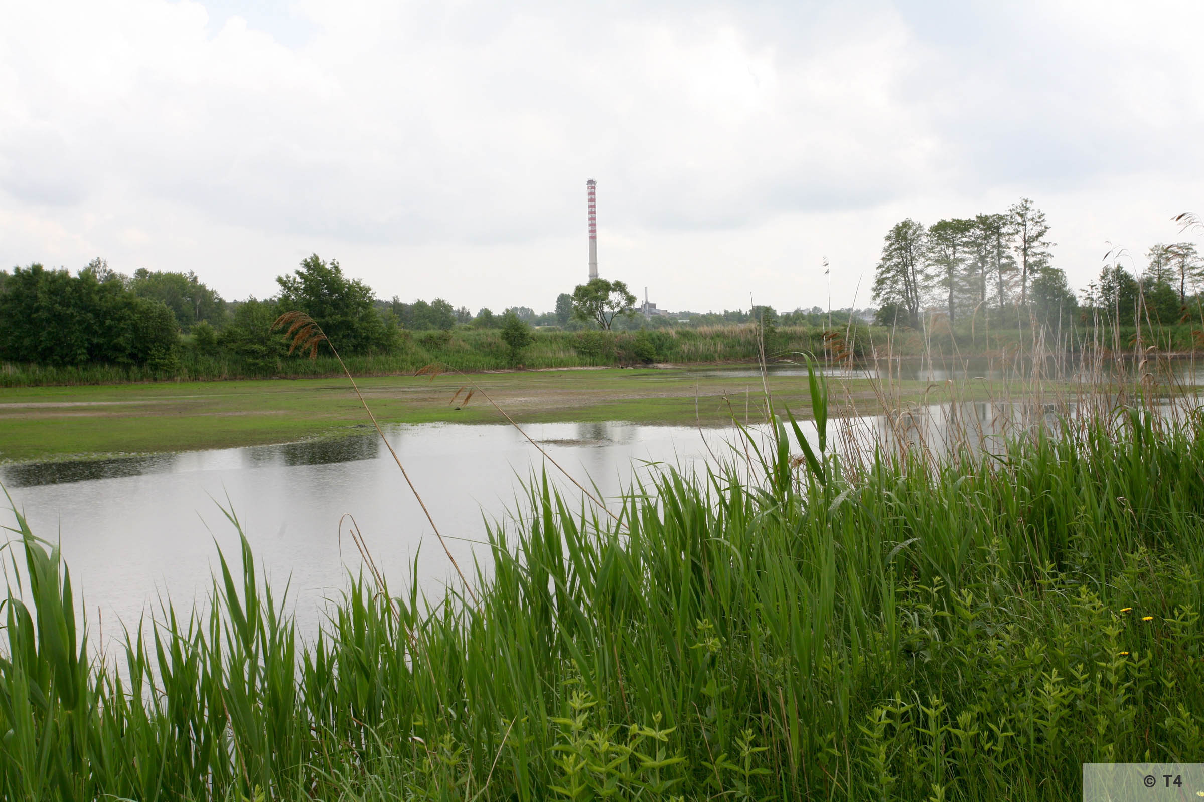 Ponds near the Bata factory. 2006 T4 4924