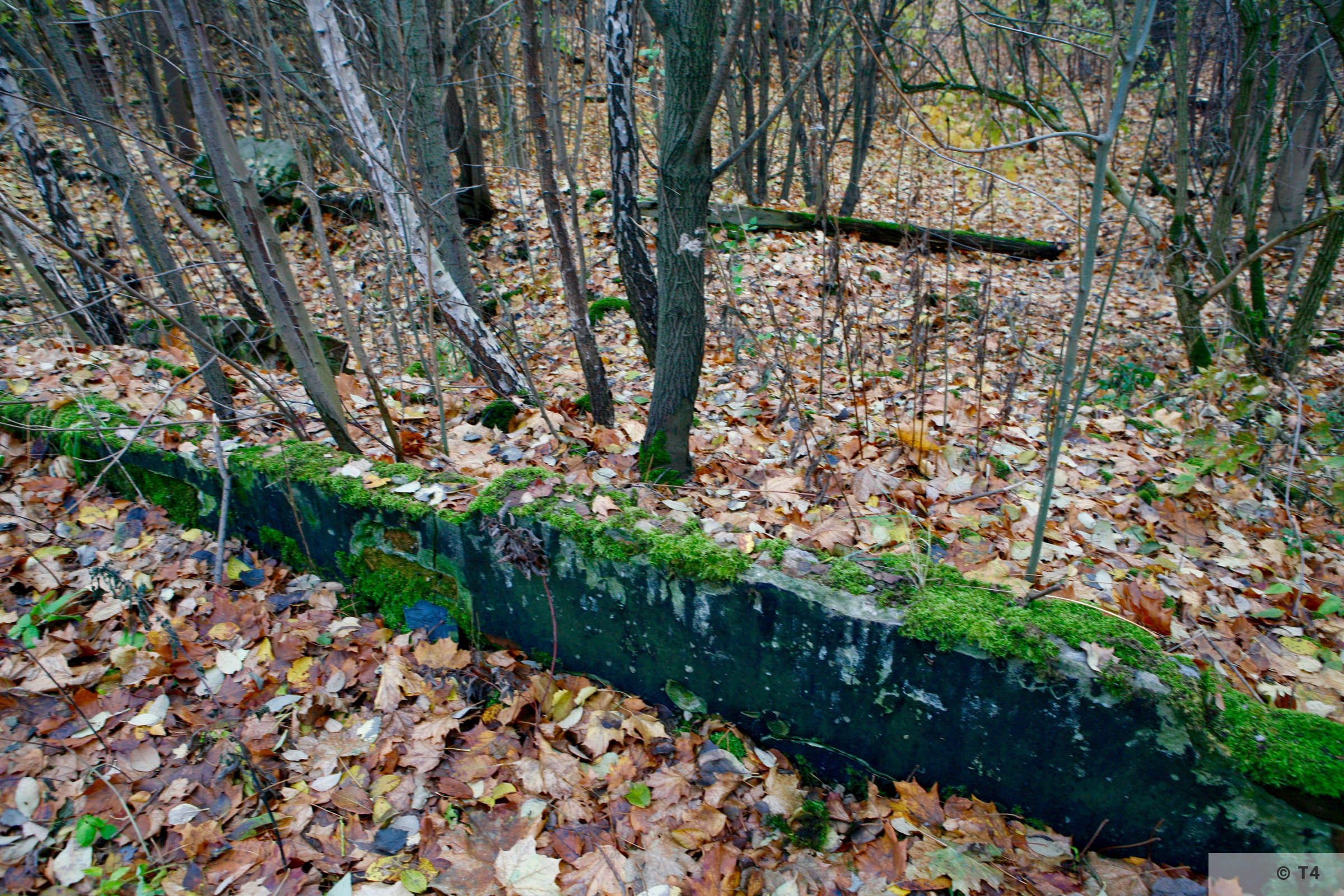 Remnants in the area of the former sub camp and labour camp. 2006 T4 4831