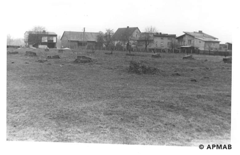 Remnants of barn in Budy sub camp in Brzeszcze Bor village. 1993 APMAB 21747 4