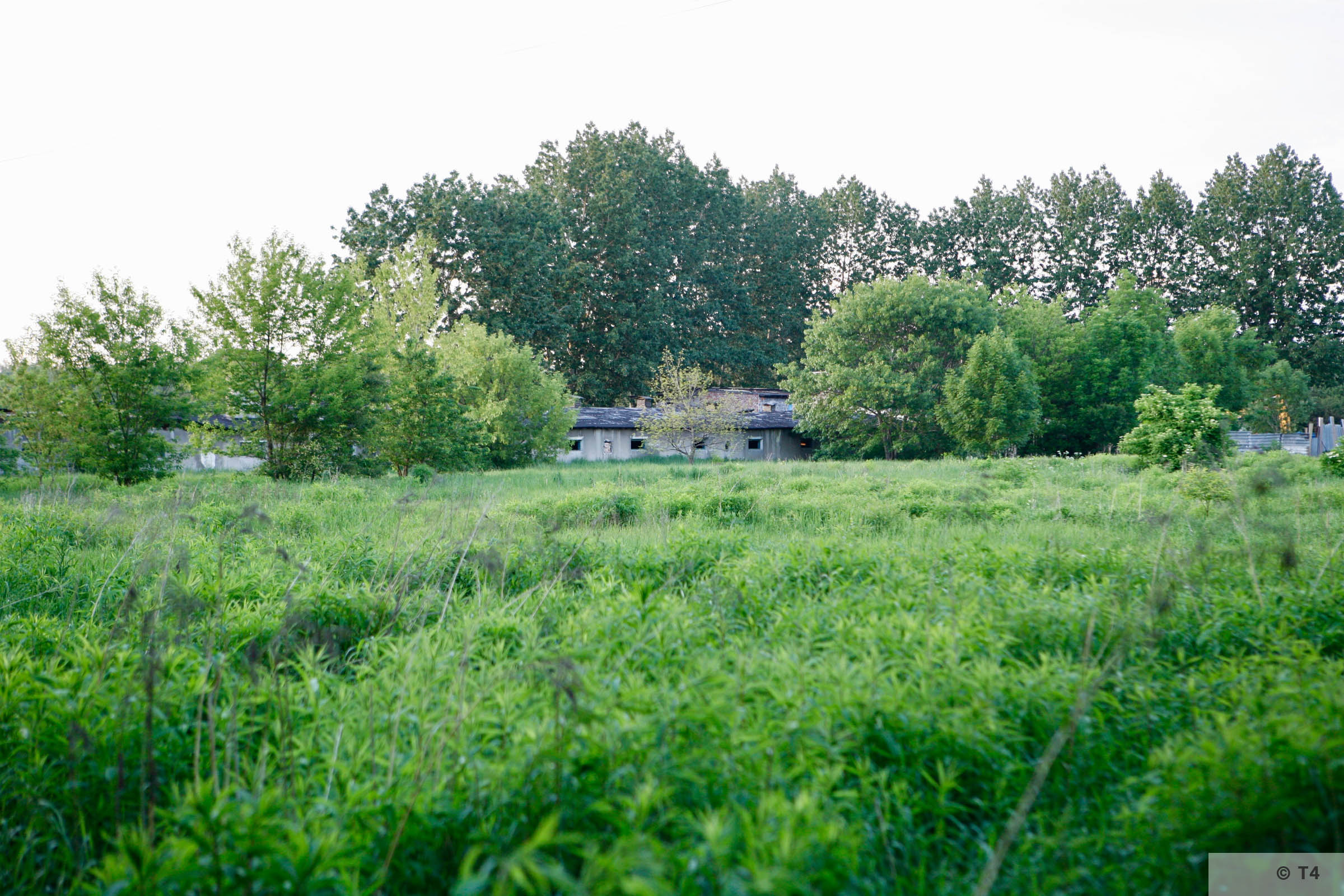 Remnants of camp near Jaworzno power station. 2007 T4 6455