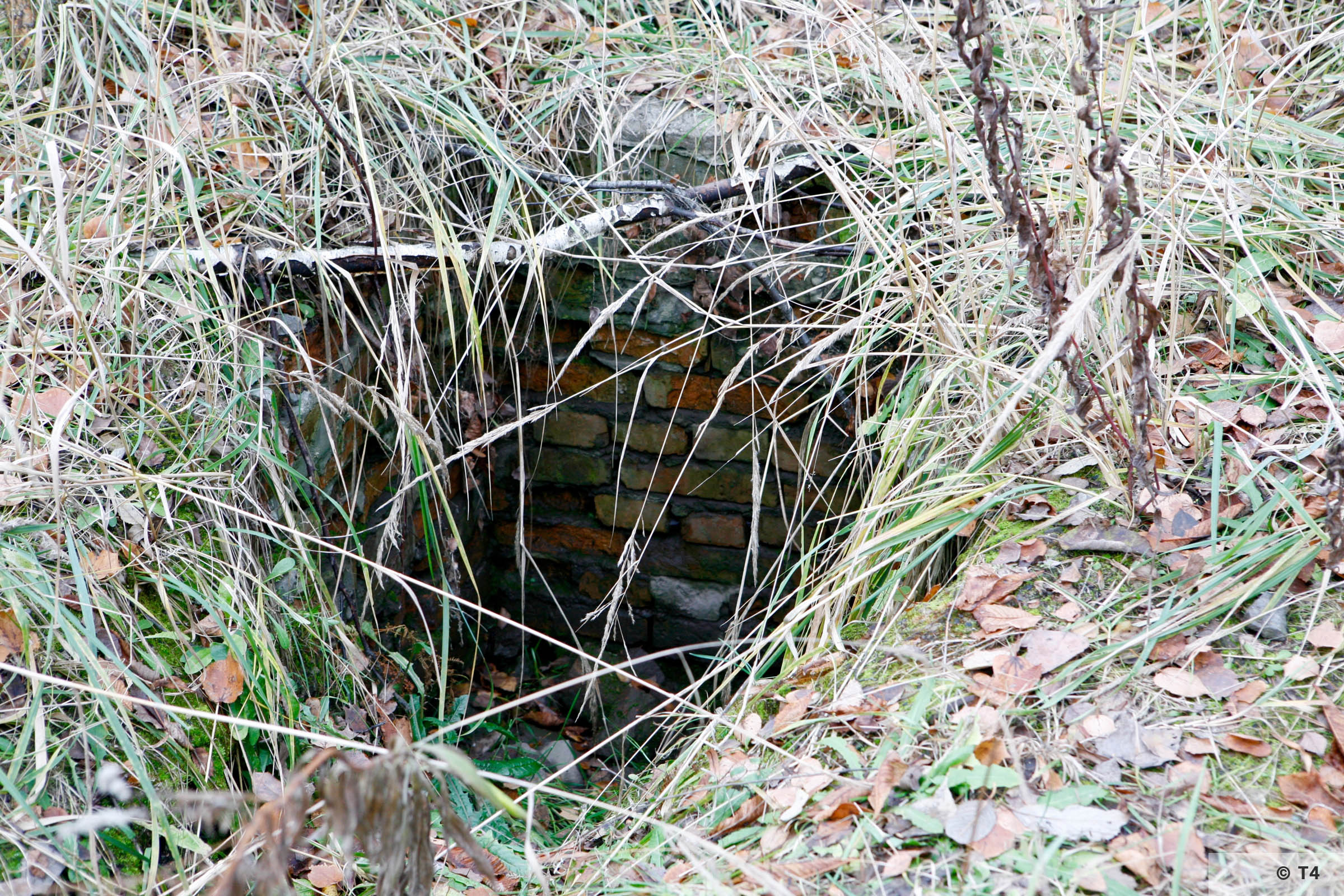 Remnants of drainage in the area of the former sub camp and labour camp. 2006 T4 4825
