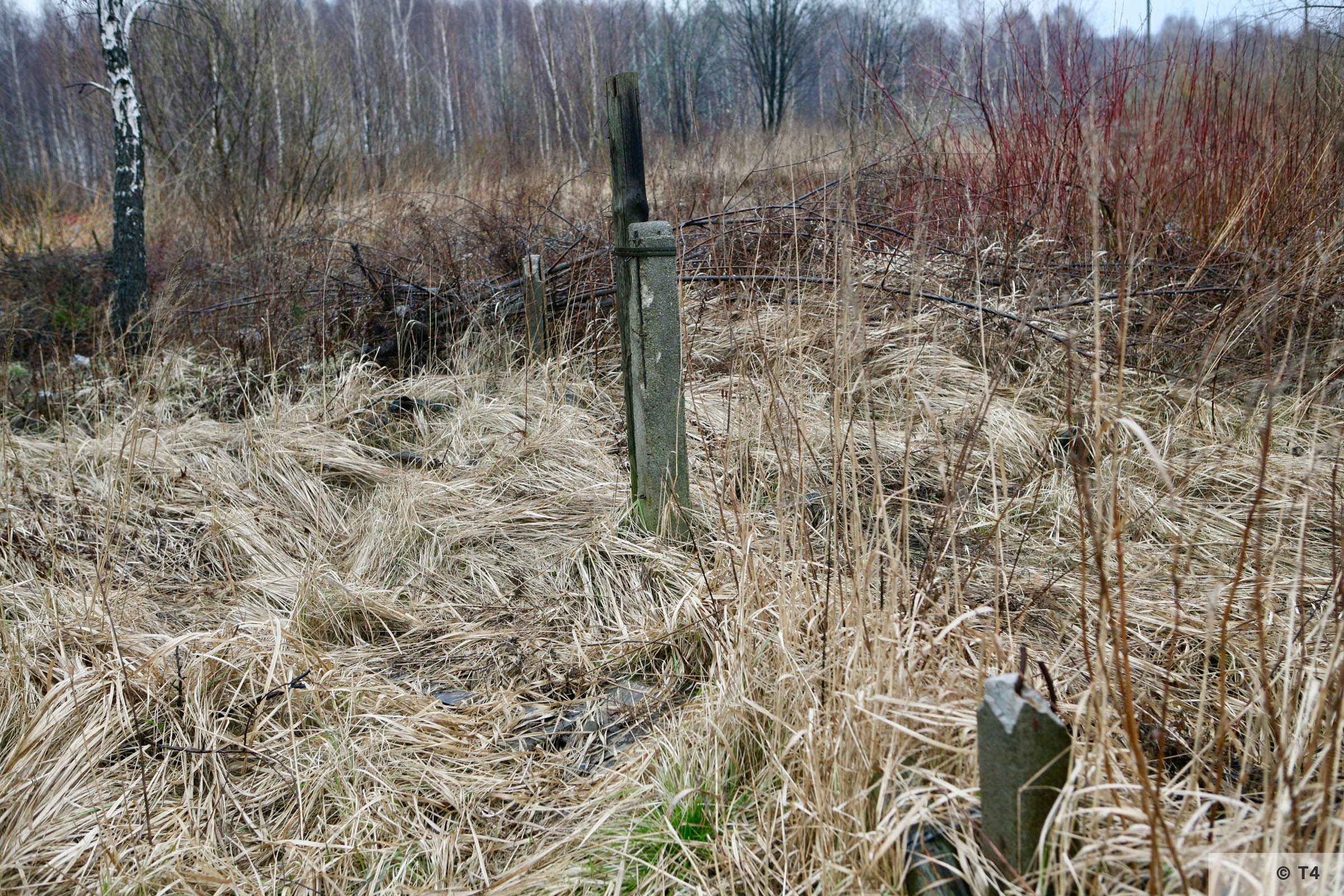 Remnants of former sub camp Lagischa. 2008 T4 4517