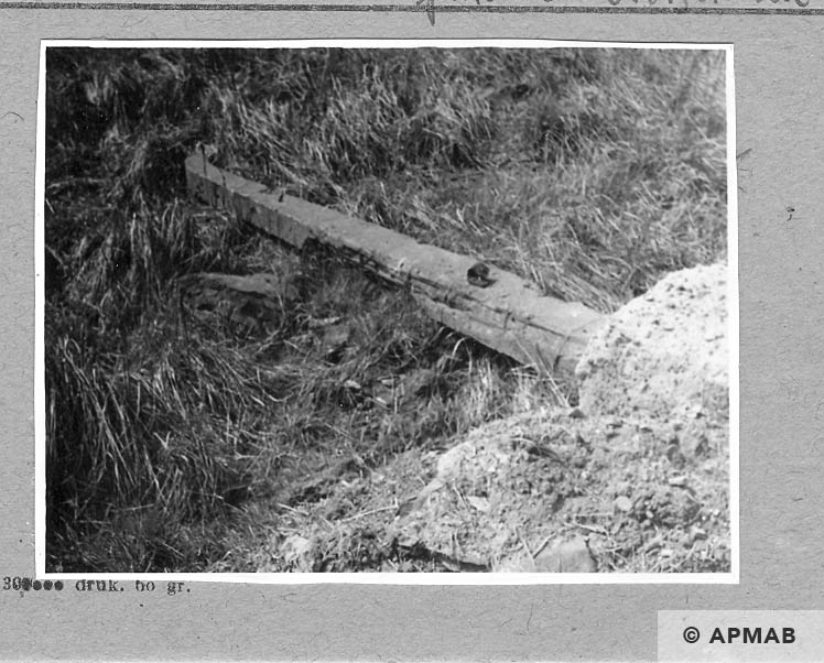 Remnants of the electrified barbed wire fence. 1962 APMAB 920