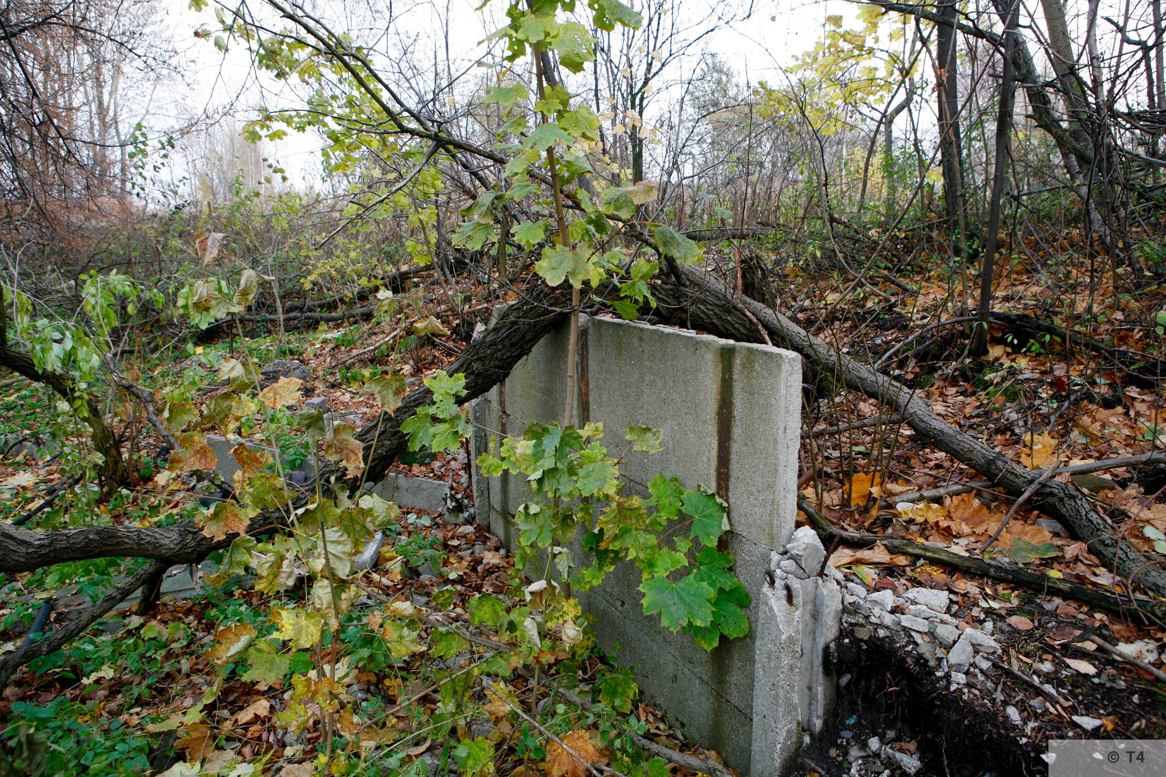 Remnants on the area of the former sub camp and labour camp. 2006 T4 4787