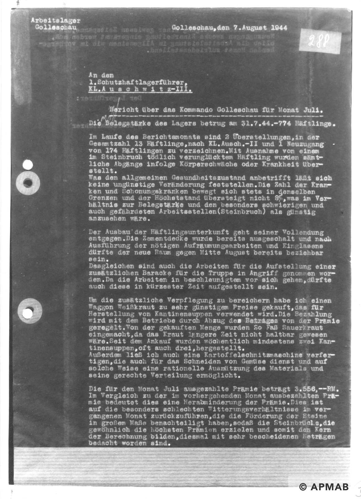 Report on Golleschau sub camp July 1944 APMAB nr inw. 30523 str. 36