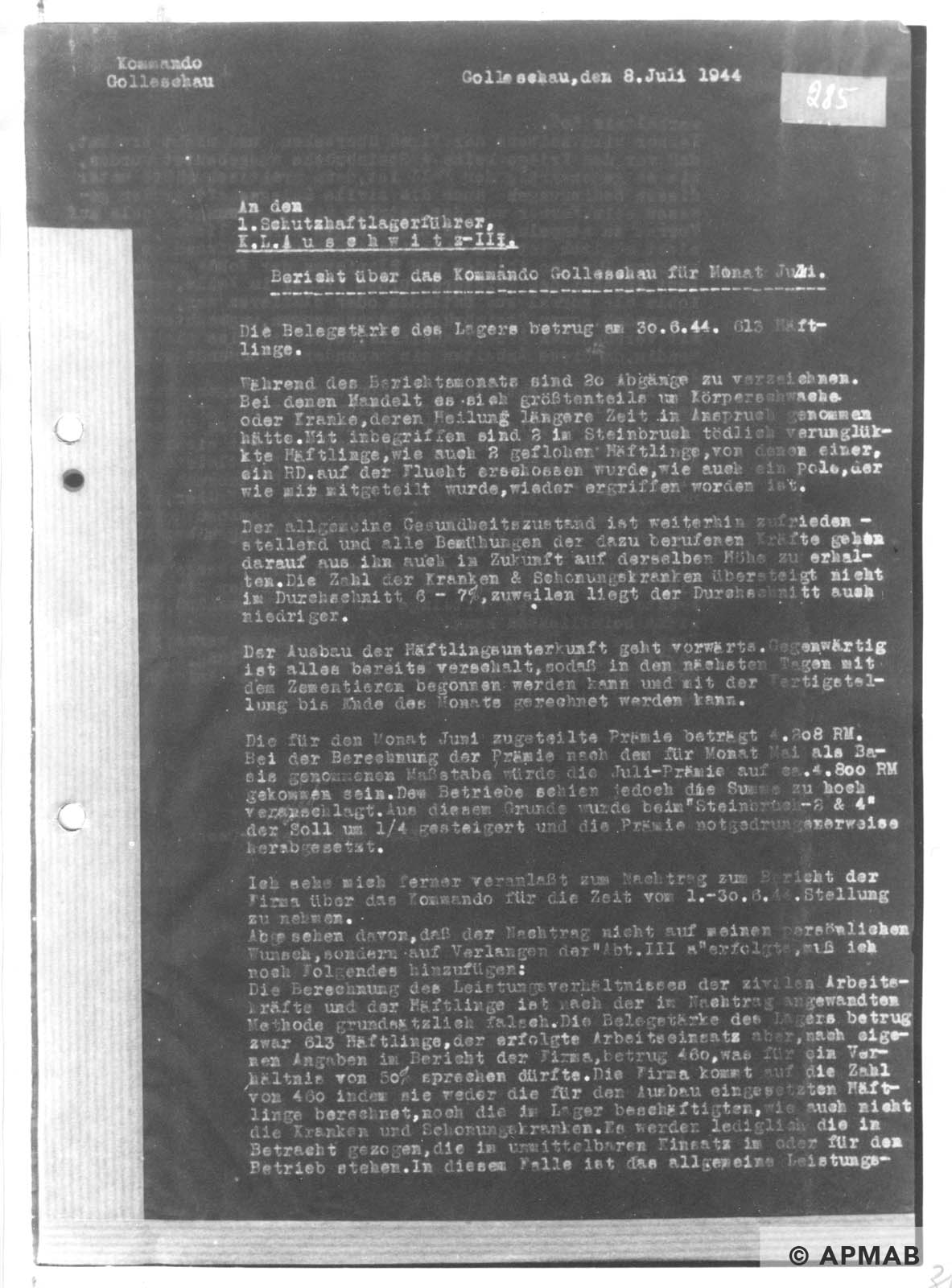 Report on Golleschau sub camp June 1944 APMAB nr inw. 30523 str. 31