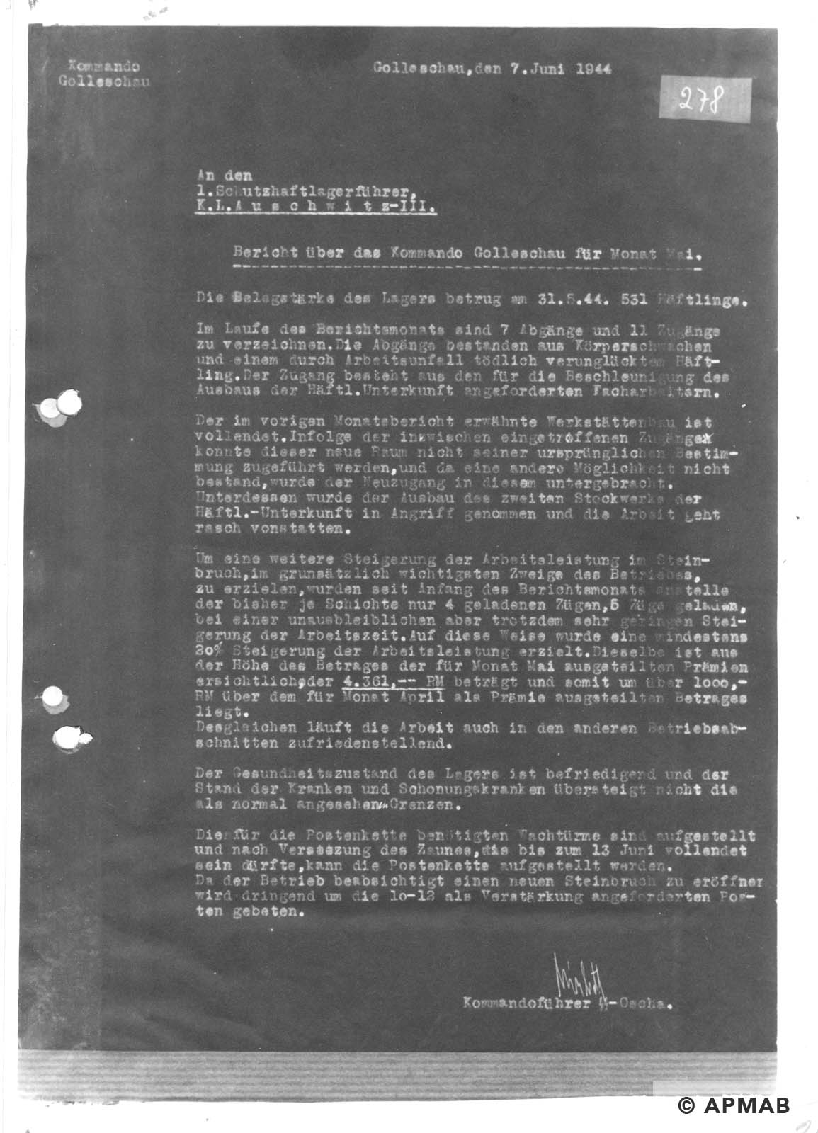 Report on Golleschau sub camp May 1944 APMAB nr inw. 30523 str. 24
