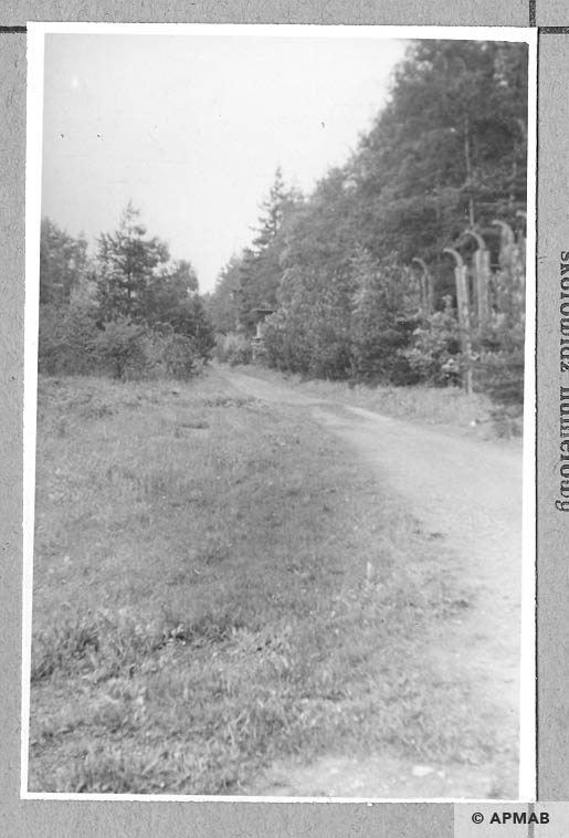 Road between Judenlager and Bahnhofslager on the left gate. 1965 APMAB 8776