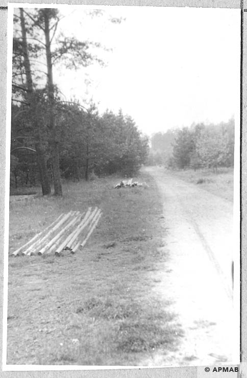 Road on the North side of the Bahnhofslager. 1965 APMAB 8786