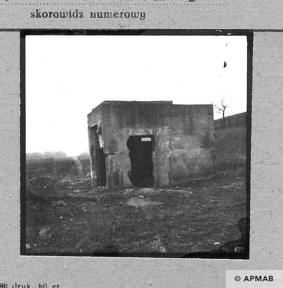 Ruins of the guardhouse close to the main gate. 1959 APMAB 4418