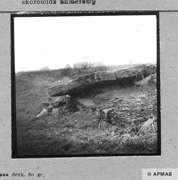 Ruins of the sub camp. 1959 APMAB 4416