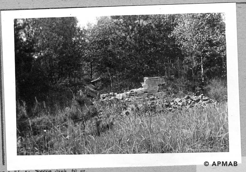 Ruins of unknown camp building.1965 APMAB 8784