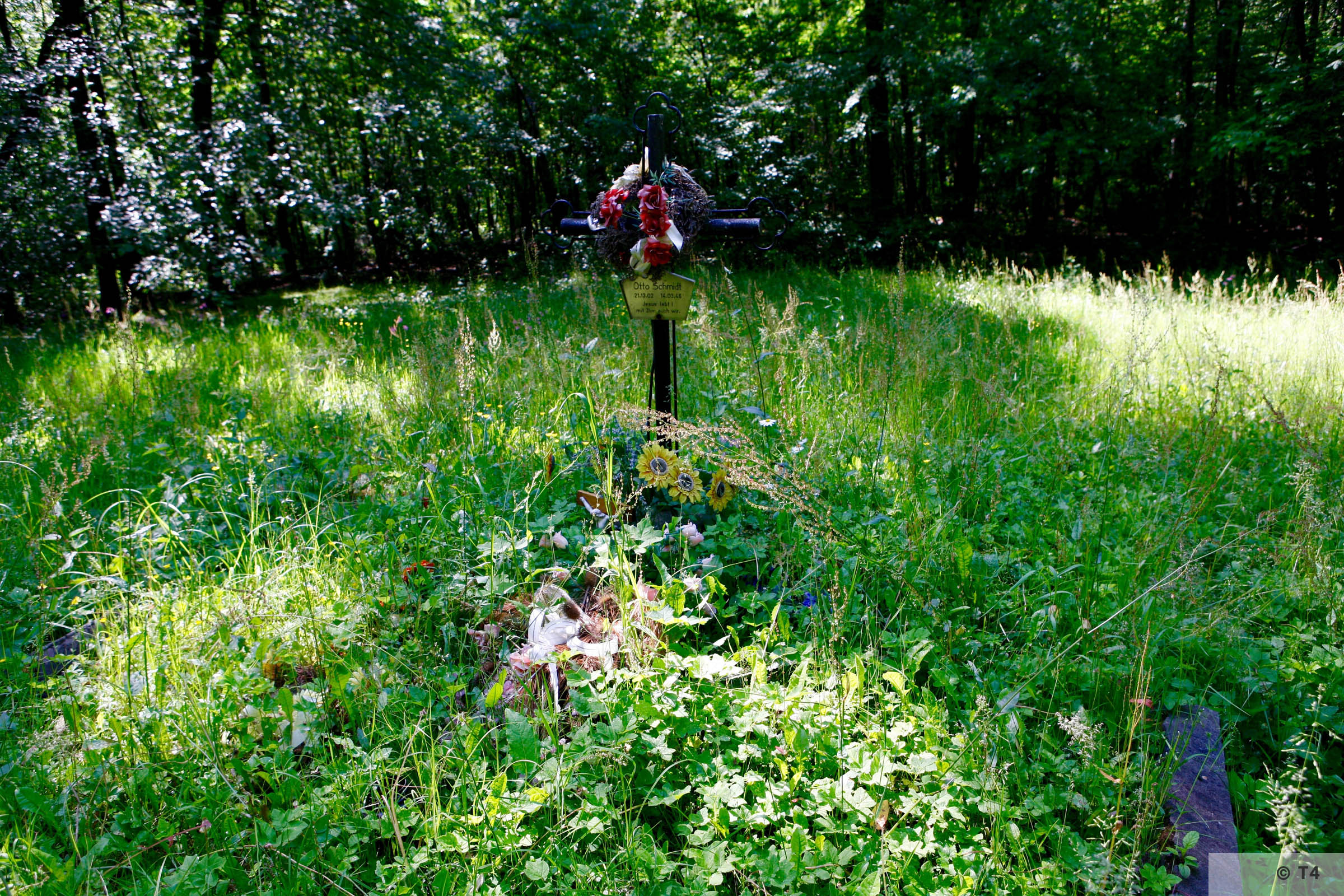 Small forest graveyard near the Lager Ostland camp. 2006 T4 6924