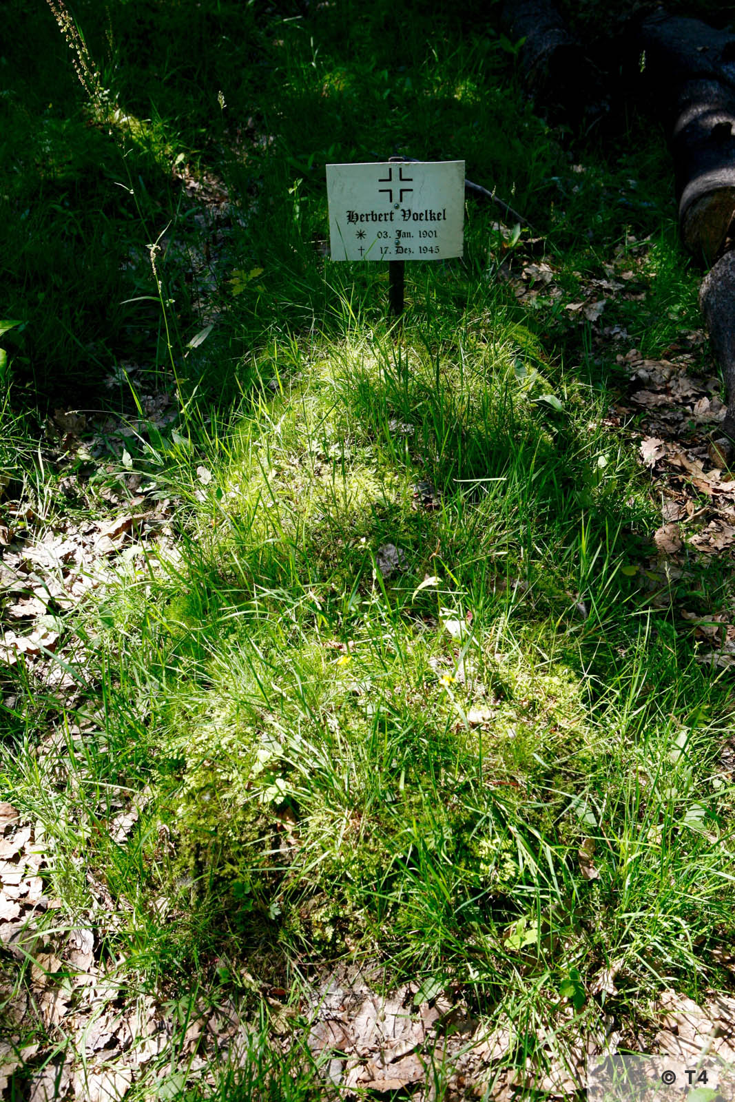Small forest graveyard near the Lager Ostland. 2006 T4 6930