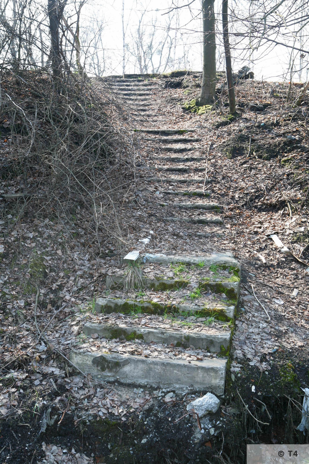 Stairs from sub camp and labour camp to steel works. 2007 T4 6699