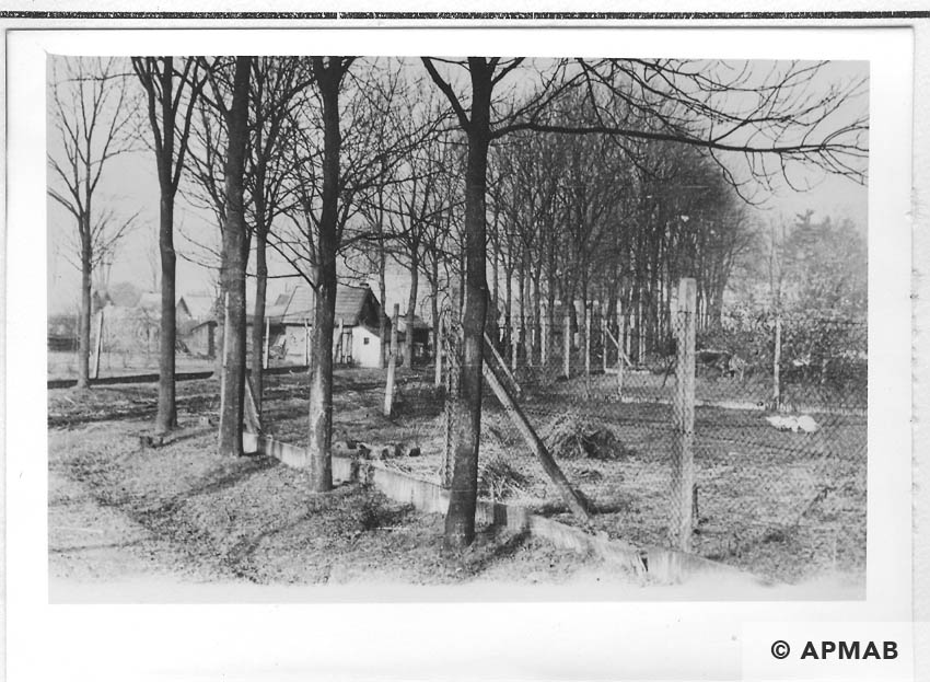 Sub camp fence in the background hen houses. 1955 APMAB 22273 10