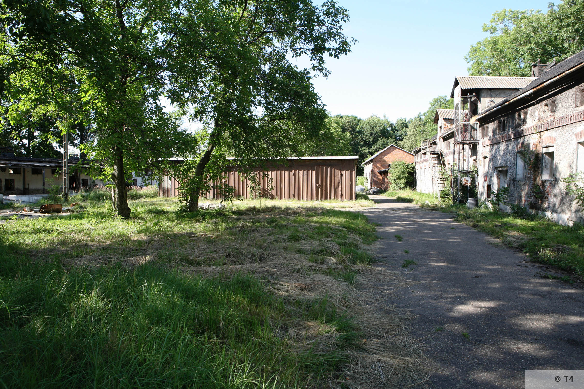 View of the area of the former sub camp. 2007 T4 9358
