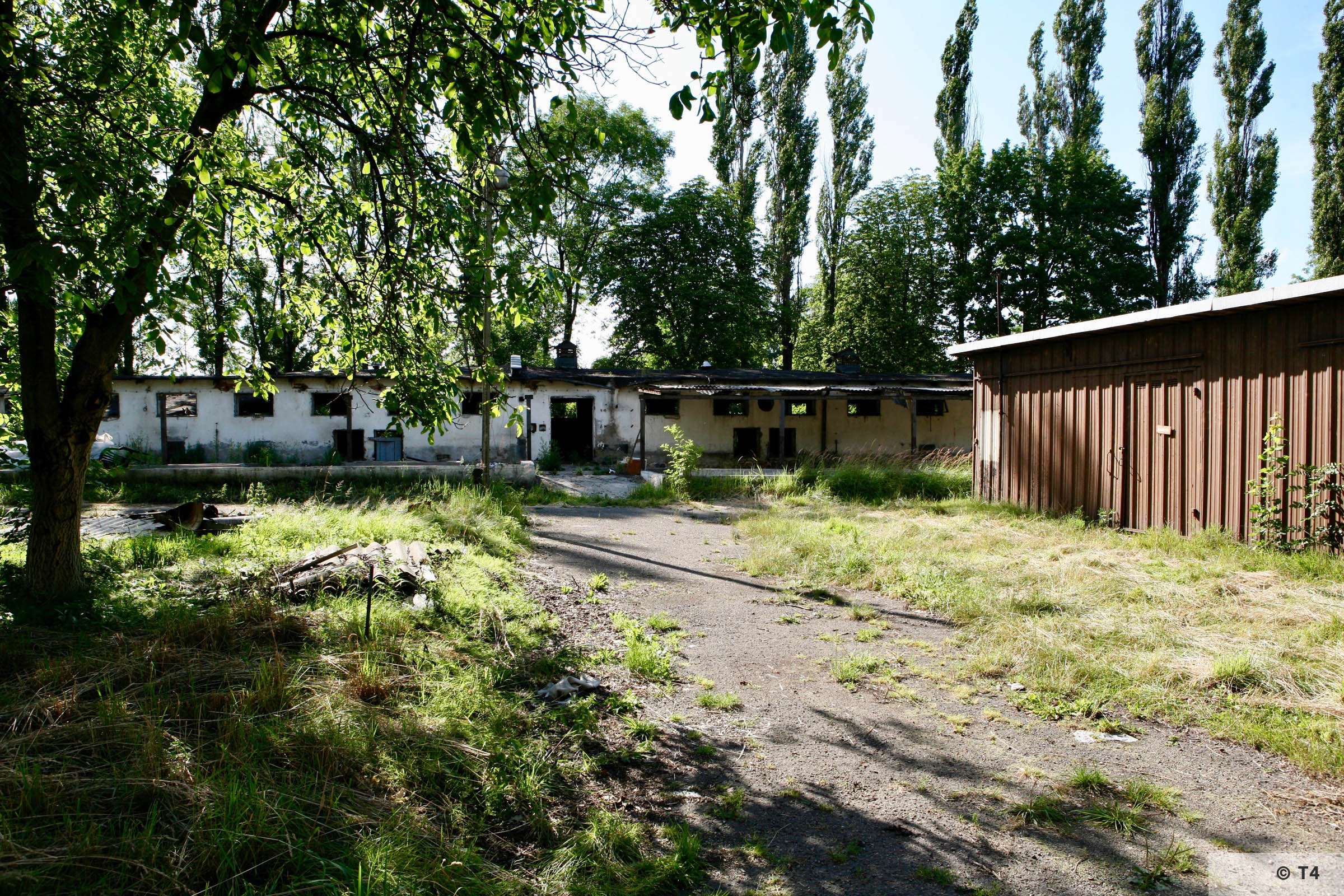 View of the single storey stable block where Kapos were housed and hospital. 2007 T4 9314