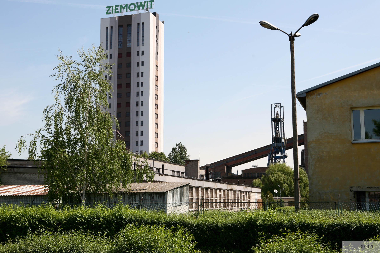 Ziemowit mine. 2006 T4 6956